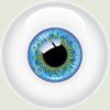 eyebluegr_sm