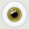 eyegrbr_sm