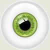 eyegreen_sm